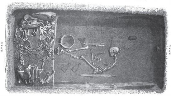 De l'ADN à la guerrière viking